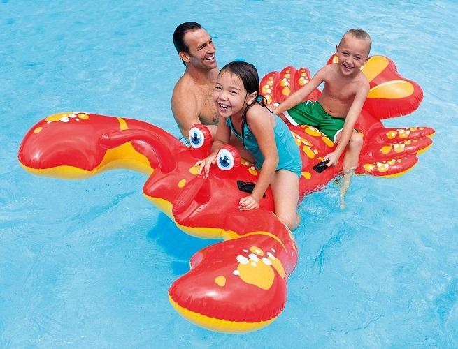 Homard à chevaucher INTEX- ferré piscines