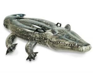 Alligator à chevaucher INTEX- Ferré piscines à Allauch